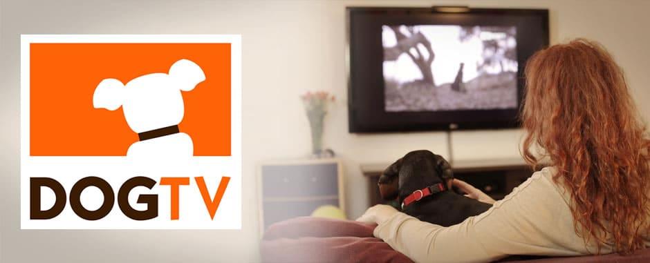 DogTV (logo)