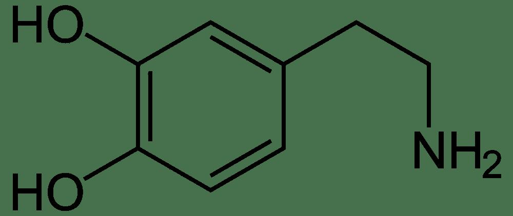Efectos del azúcar - Composición de la Dopamina.