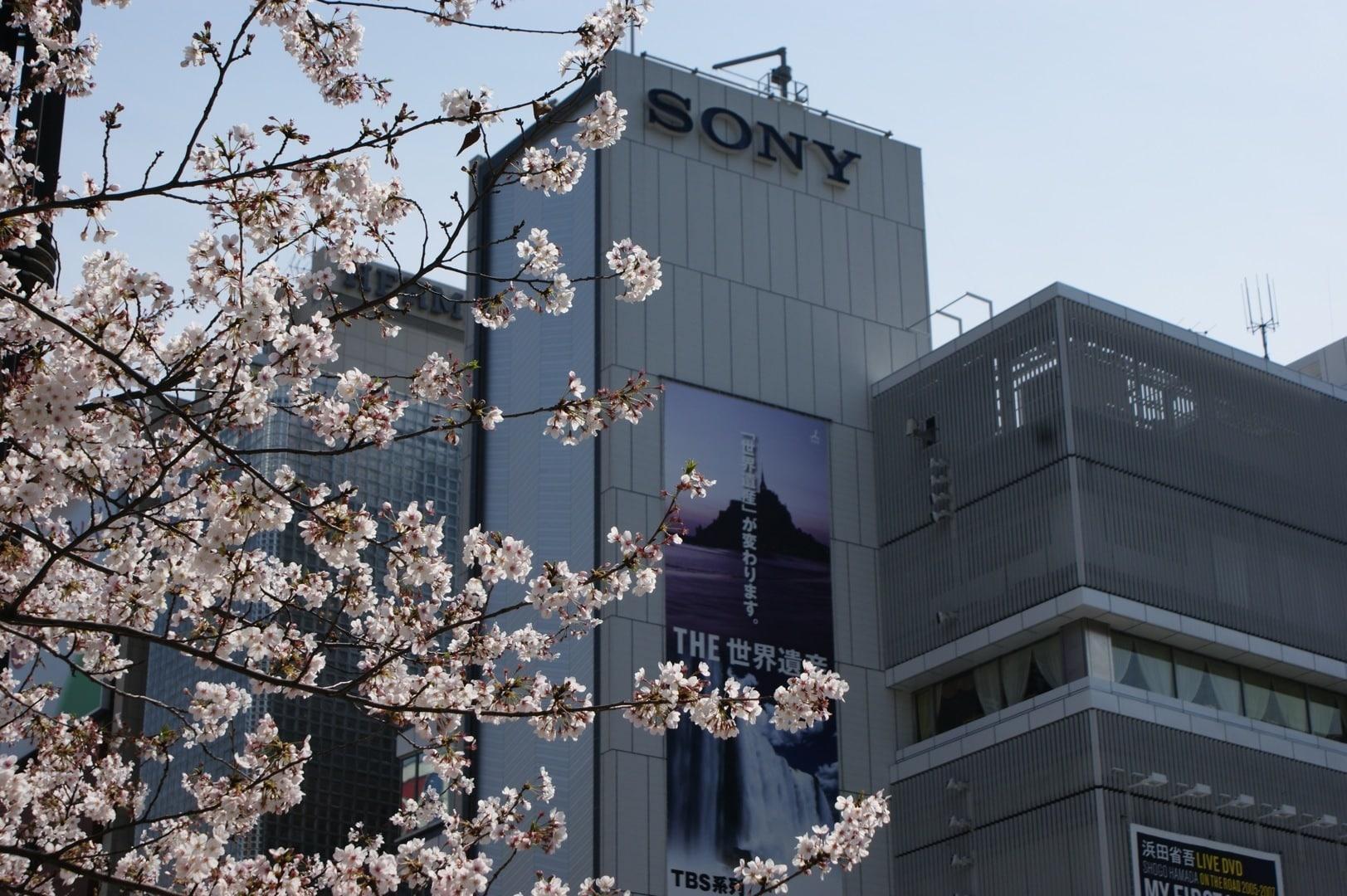 Sony abrirá en febrero un centro de investigación de genoma humano.