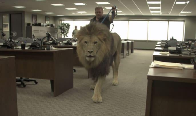 The Wolf of Wall Street - En esta escena de la película un león caminó junto a un entrenador que fue digitalmente borrado.