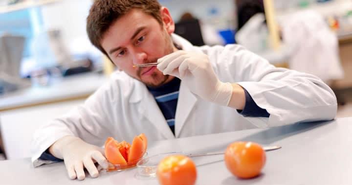 El estudio de organismos unicelulares entran en los proyectos de Santiago Innova.