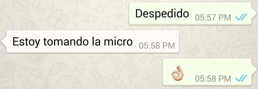 WhatsApp: Los ticks azules aparecen únicamente cuando el destinatario abrió la conversación contigo.