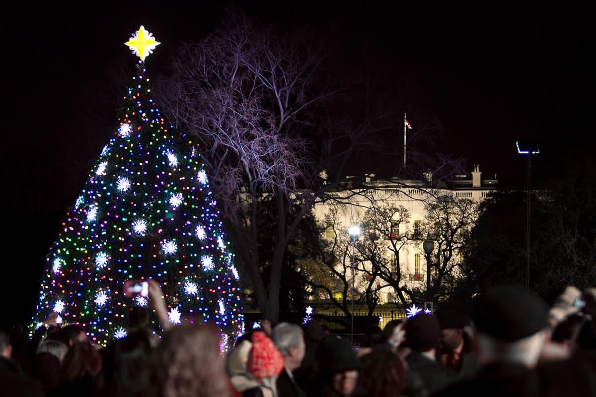instalaron un rbol navide o con luces led que