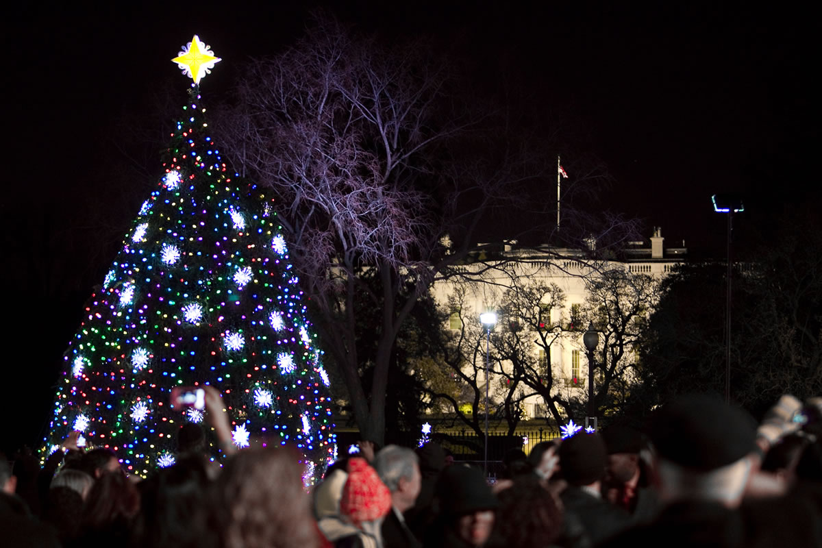 Instalaron un rbol navide o con luces led que - Luces arbol de navidad ...