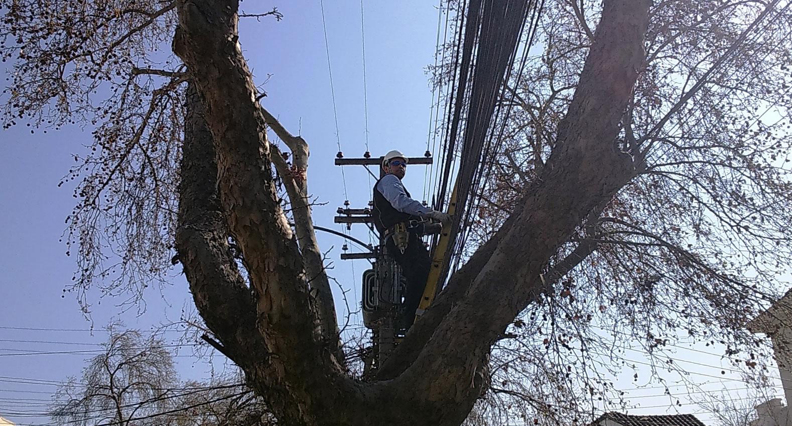 Providencia se suma al trabajo que ya se hace en otras dos comunas de Santiago.