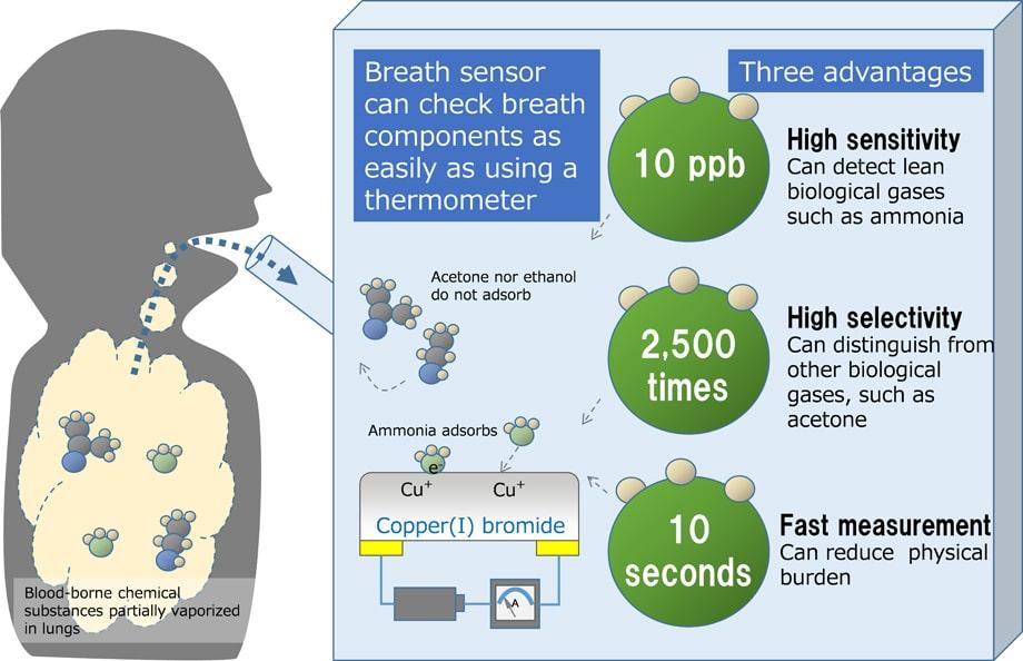 Así funciona el sensor de gases.
