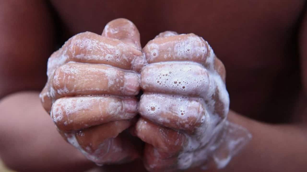 Informan que nuevo brote de cólera en Chile no es mortal
